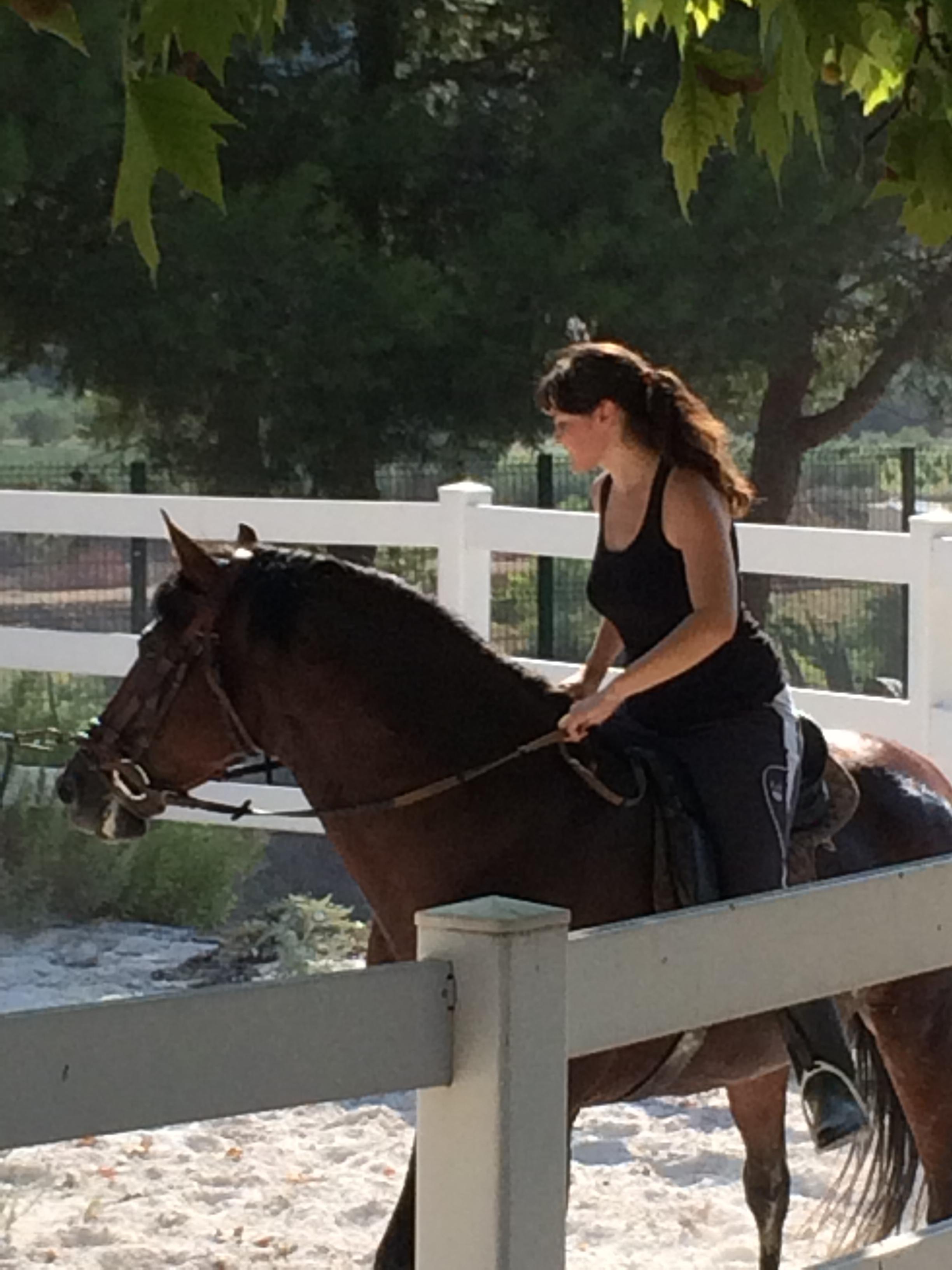 Instalaciones ecuestres caballos casa rural valencia casa rural con granja casa rural con - Casa rural la granja ...