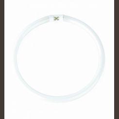 FARO FLUORESCENTE T5 CIRCULAR 55W 4200K 15854