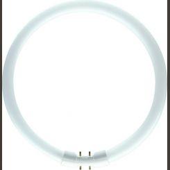 Philips TL5 Circular 40W 830 (MASTER) 9724040
