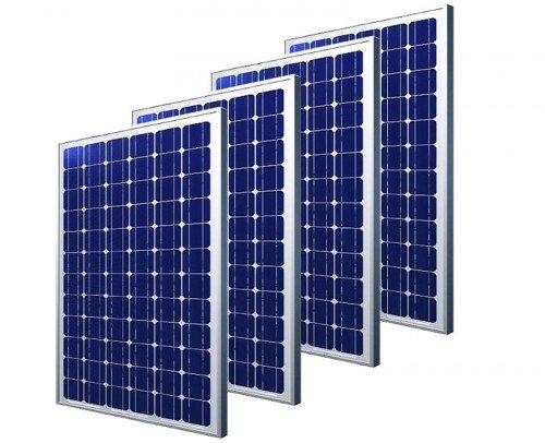 Paneles solares Blackbull